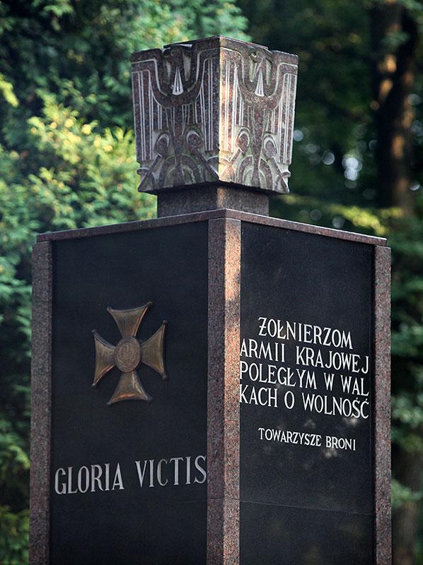 """Godzina """"W"""" na Powązkach Wojskowych - fot. Piotr Galas (zdjęcie 35 z 38)"""
