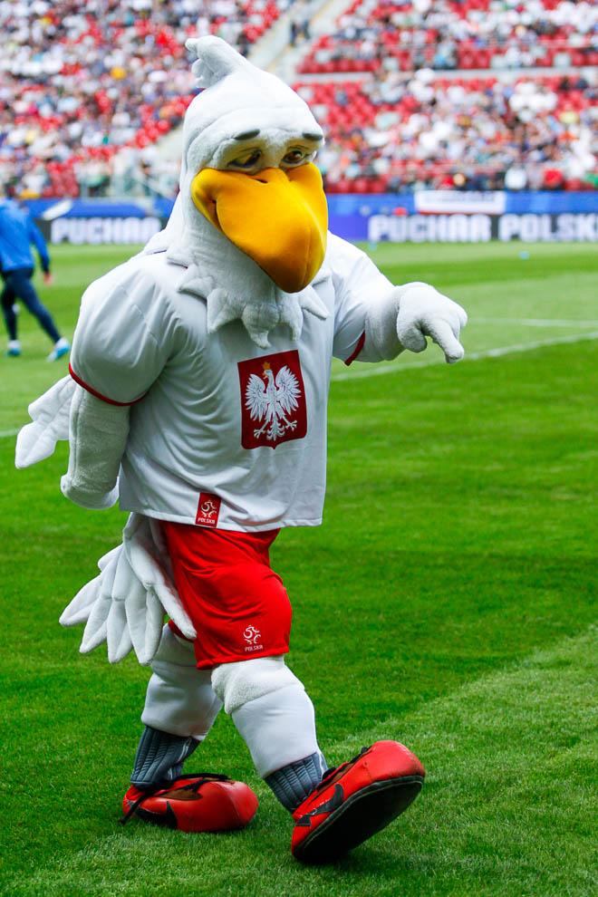 Finał Pucharu Polski: Lech Poznań 1-2 Legia Warszawa - fot. Piotr Galas (zdjęcie 13 z 172)